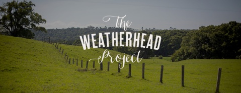 The Weatherhead Project